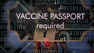 Digitala Covid-19-pass: möjliga säkerhets- och integritetsrisker
