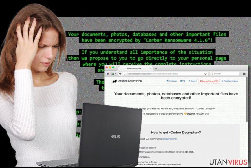 Viruset Cerber ögonblicksbild