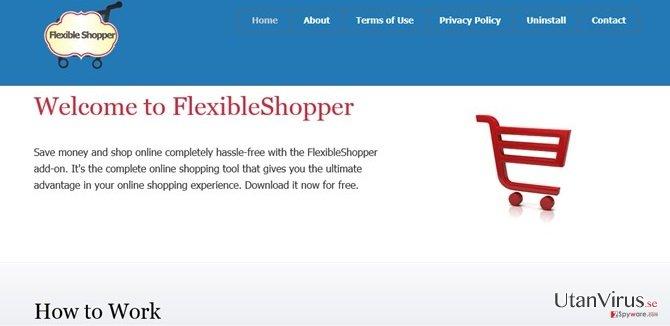 Annonser från FlexibleShopper ögonblicksbild