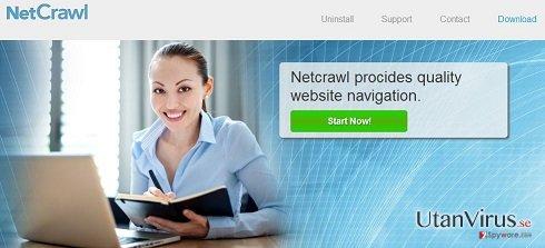 Annonser från NetCrawl ögonblicksbild