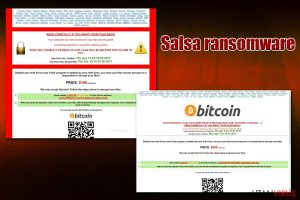 Salsa ransomware