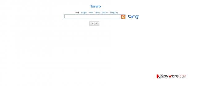 SearchNet ögonblicksbild