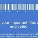 Viruset TeslaCrypt ögonblicksbild