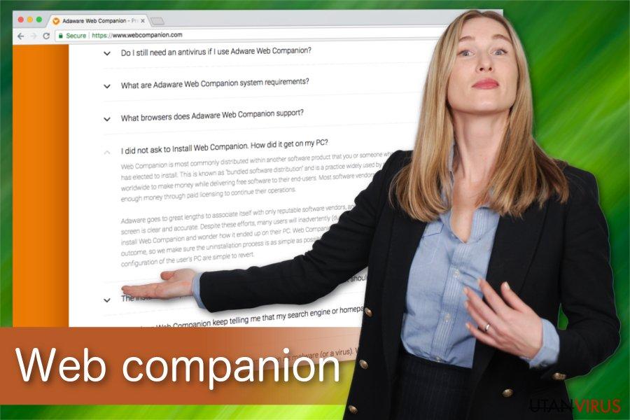 Web companion illustration