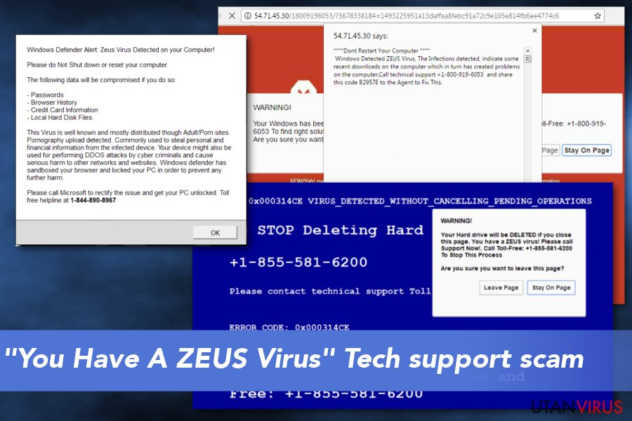 """You Have A ZEUS Virus"" Tech support scam"